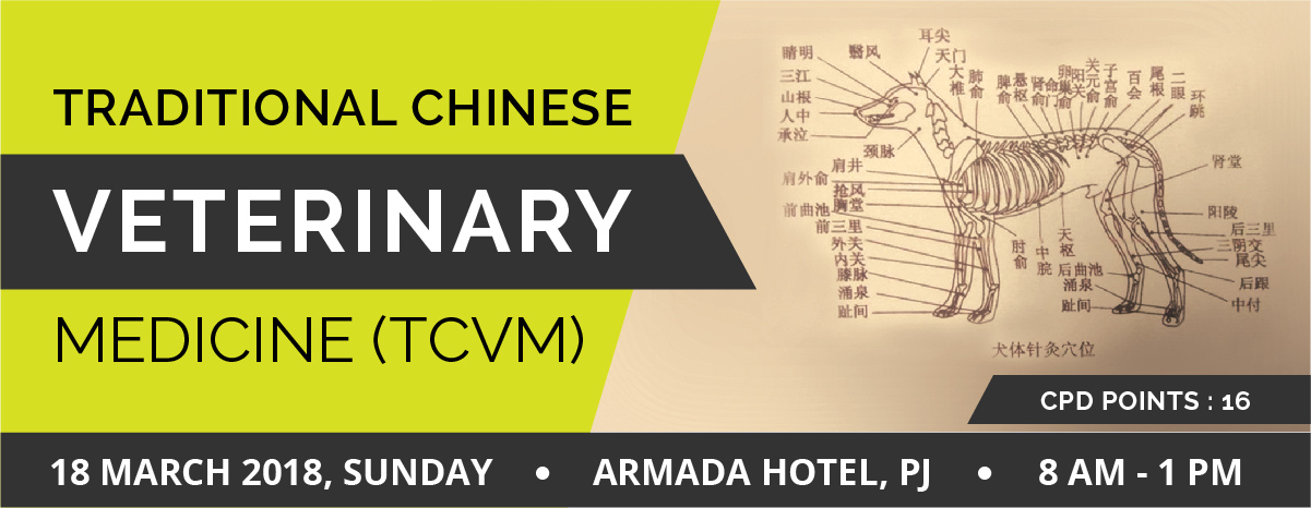 TRADITIONAL CHINESE VETERINARY MEDICINE (TCVM)